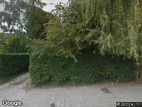 Valkenburgseweg 17 Katwijk, het kappen van een boom aan de zijkant van de woning