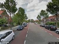 Kennisgeving verlengen beslistermijn op een aanvraag omgevingsvergunning, kappen en herplanten 203 bomen, diverse locaties Zwolle (zaaknummer 58496-2018)