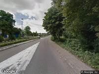 Aanvraag omgevingsvergunning, kappen van een boom (Kastanje), Bergweg-noord 31, 2661 CM Bergschenhoek