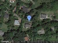 Bekendmaking Verleende omgevingsvergunning (activiteit kappen) - Ouddorp, Polderbos: het kappen van bomen, verzenddatum: 13/12/18, referentienummer: Z/18/153281