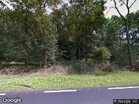 Omgevingsvergunning Raalterweg 26, kappen boom (ingekomen aanvraag)