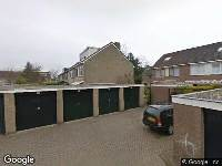 Verleende omgevingsvergunning, kappen van een dennenboom, Bachlaan 9, Alkmaar
