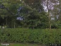 Ontvangen aanvraag omgevingsvergunning, Nieuwe Straatweg nabij 50 A te Gytsjerk het kappen van een boom