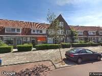 Bekendmaking Haarlem, verleende omgevingsvergunning onderdeel kappen, Steenbokstraat 18, 2018-09592, kappen Acer Negundo achtertuin, te groot voor locatie, te dicht op erfgrens, geeft schade aan opstal, verzonden