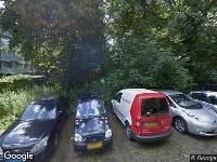 Omgevingsvergunning verleend regulier: Delft | kap: 2 bomen wegens slechte conditie  | Buitenhofdreef, tussen Bachsingel en Chopinlaan