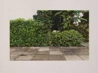 Solo expositie Spaties Spaces van Friese kunstenaar Anne Jaap de Rapper
