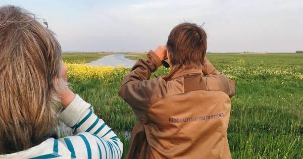 Fietsen en vogels kijken in Eemland