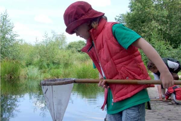 Uit-jeTent Festival Kuinderbos - Speuren naar waterdiertjes
