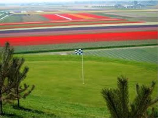 Golf: TravelXL - Clubmed golfdag
