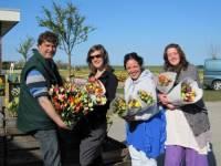 Evenement Floratuin arrangement Julianadorp