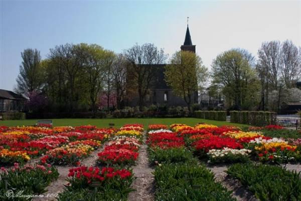 Lange en korte wandelingen rondom Castricum