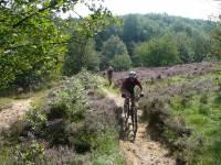 Mountainbike clinic: niveau 3 clinic