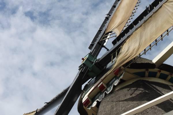 Openstelling molen, ateliers en rondleidingen