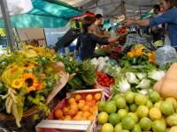 Biologische markt Roermond