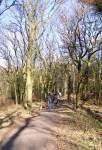 Voorjaarswandeling door het eeuwenoude Rysterbosk