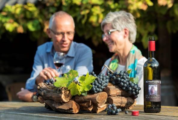 Rondleiding en wijnproeverij over wijngaard Hesselink