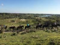 Paardrijden: Ontbijtrit