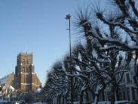 Stadswandeling en rondleiding Geertruidskerk