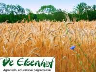 De Elsenhof, agrarisch- educatieve dagrecreatie
