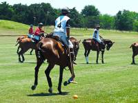 Royal Polo at the Palace