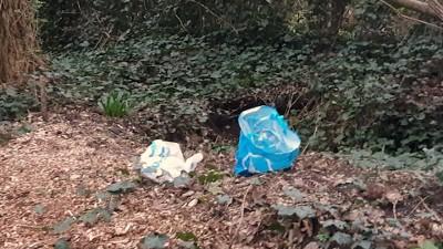 Dode puppy's aangetroffen in Leidschendam