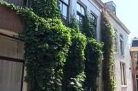 Woning Grote Kerkstraat 216 Leeuwarden