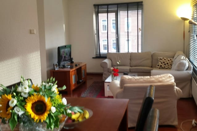 renovated furnished room