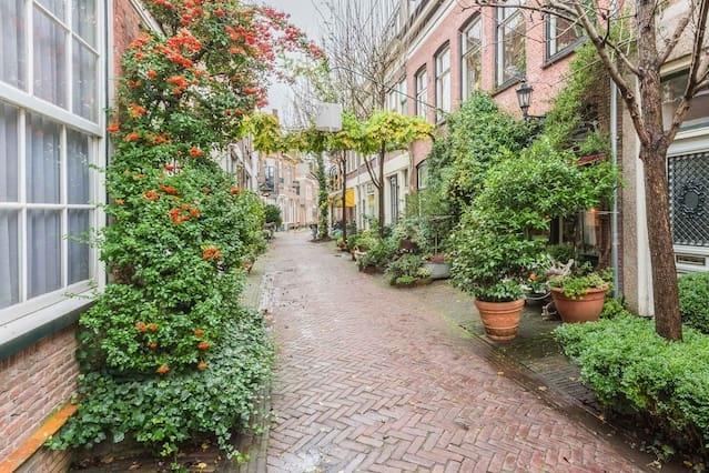 Charming apartment Haarlem