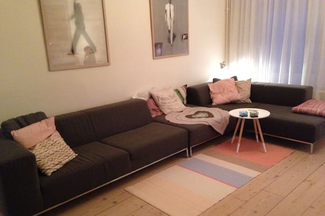 GREAT DEAL: Haarlem centre/beach/Amsterdam