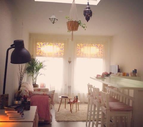 Cozy apartment, centre Haarlem