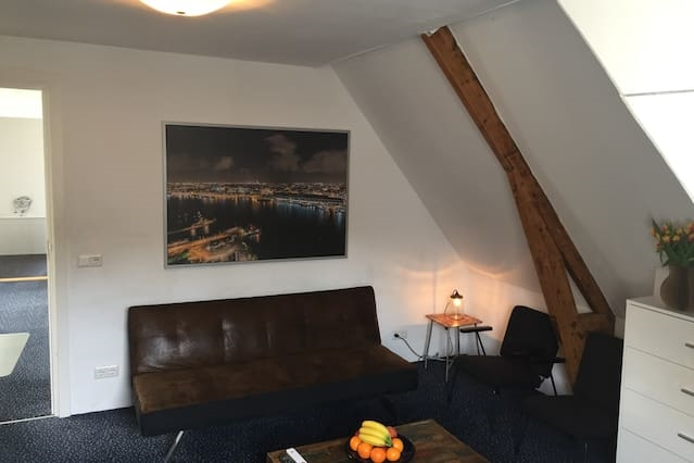 Two rooms for 4 persons next to Vondelpark!