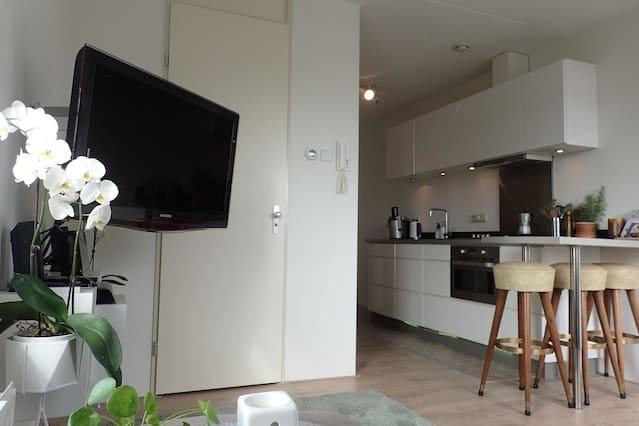 Appartement in het Spijkerkwartier (City centre)