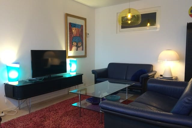 Separate luxurious part of apartment, 2 bdr,4 beds