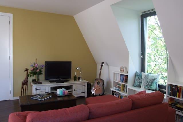 Spacious apartment in Haarlem