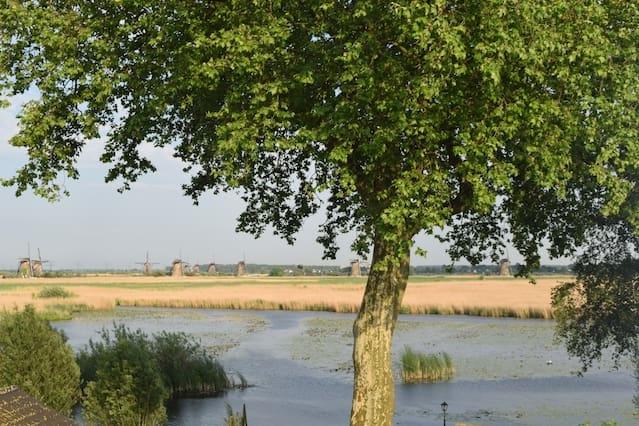 Dijkhuis met uitzicht op de molens van Kinderdijk