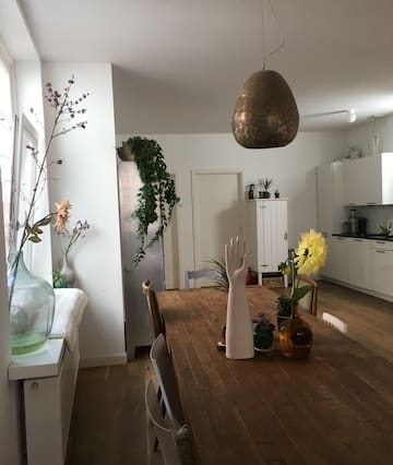 apartment near Amsterdam& the beach