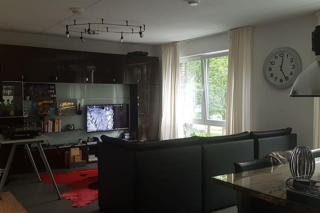 Big modern apartment