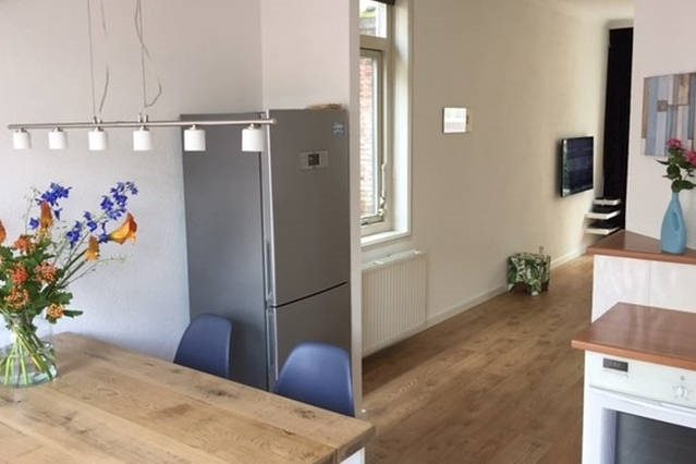 Luxurious cosy apartment in the heart of Haarlem