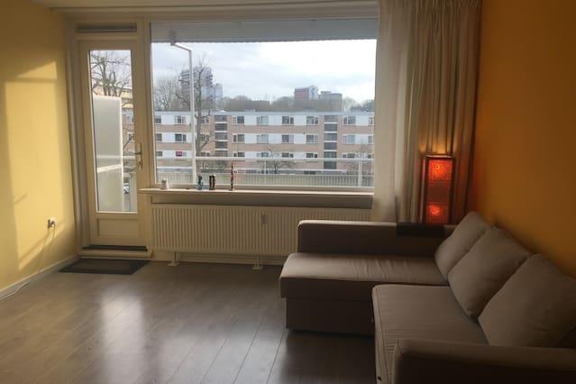 Apartment (living, bedroom, kitchen, bathroom)