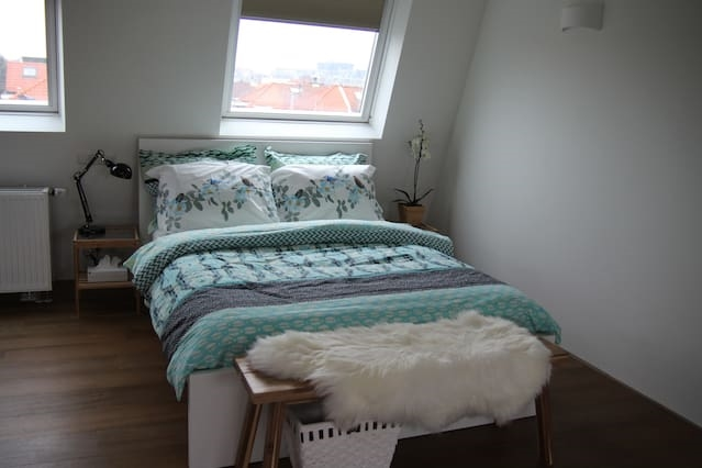 Double Room Central Haarlem with FREE Parking