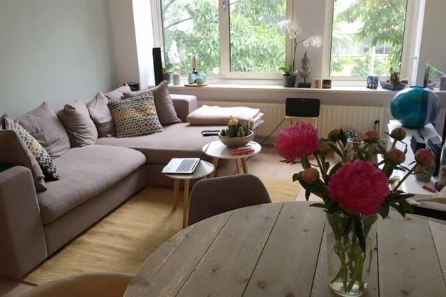 Light & Comfy Apartment near centre Haarlem