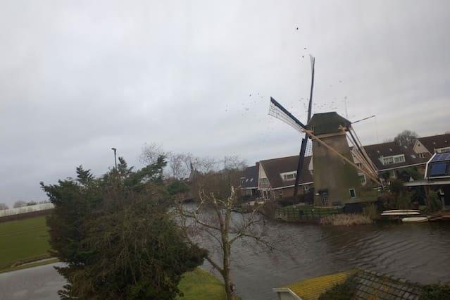 A House in Molenaarsgraaf