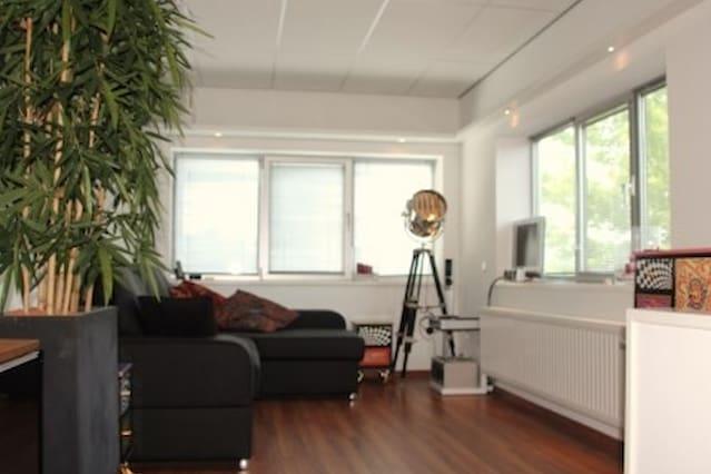 Modern Studio 15 km from Rotterdam (5 from Dordt)